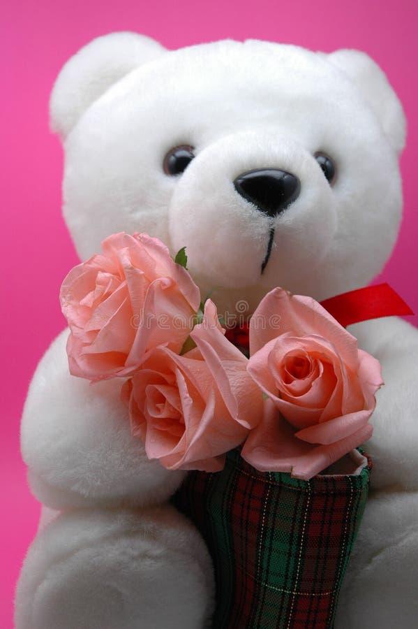Teddybär und rosafarbene Rosen lizenzfreie stockfotos