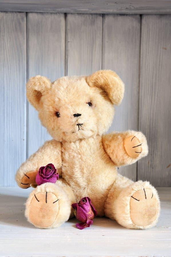 Teddybär und Rosen lizenzfreie stockbilder
