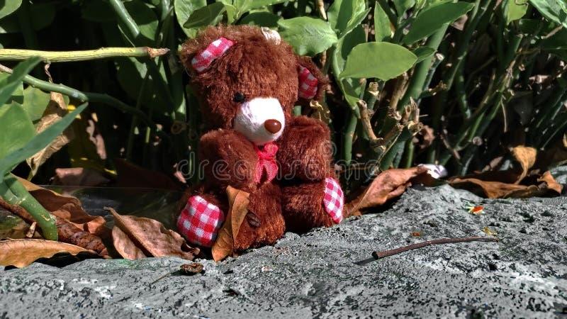 Teddybär wird verlassen lizenzfreies stockbild