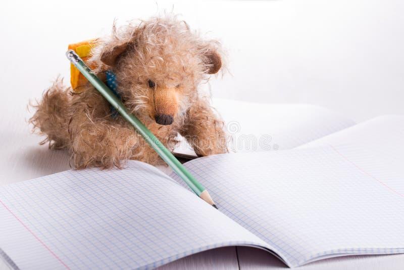 Teddybärschüler lizenzfreies stockfoto