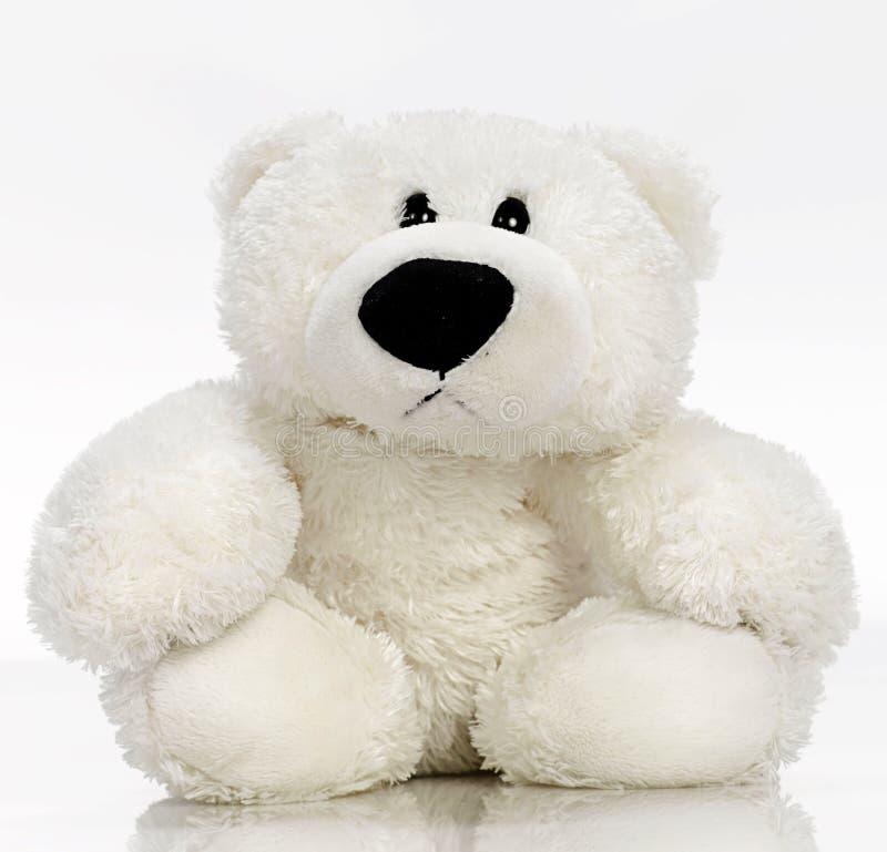 Free Teddybear Royalty Free Stock Photos - 11138448