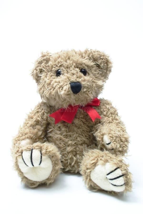 teddybear стоковое изображение