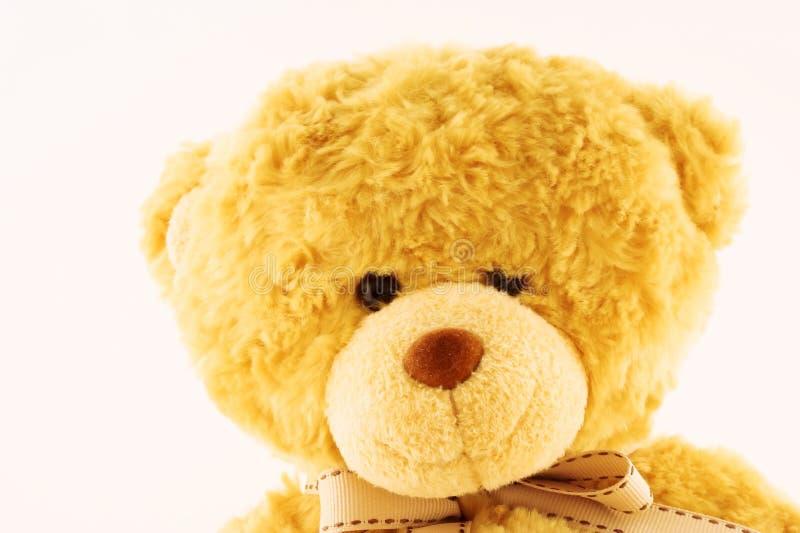 Teddybear stock fotografie