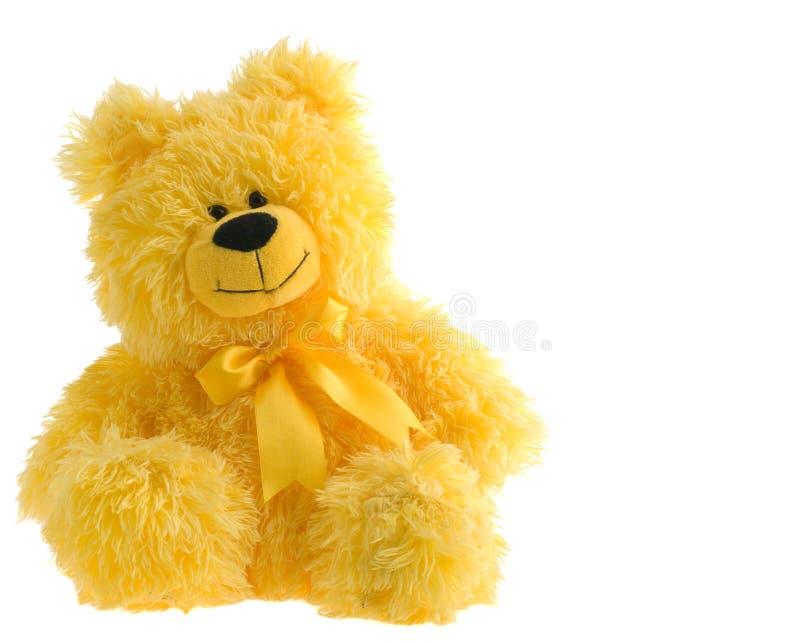 Teddybear stock images