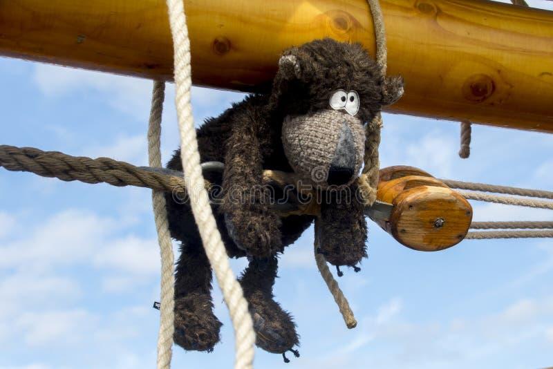 Teddybear climbing the mast royalty free stock photos