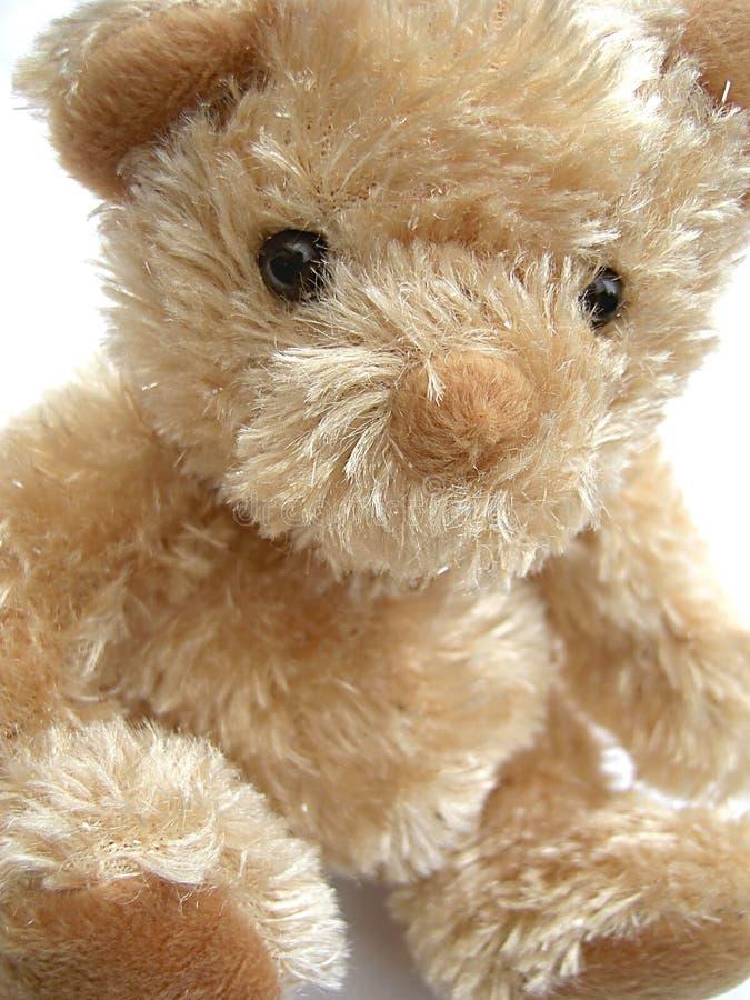 Download Teddybeer stock foto. Afbeelding bestaande uit spel, gezicht - 39240