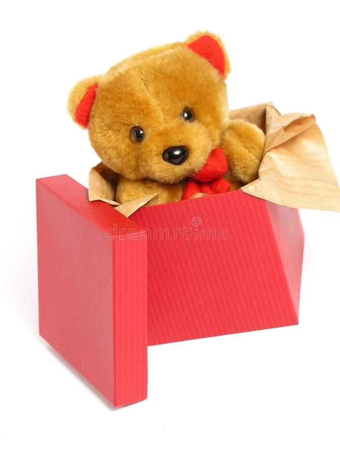 Teddybeer binnen een Doos royalty-vrije stock afbeeldingen