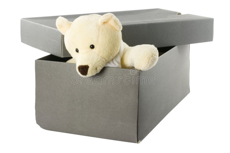 Teddybeer in een shoebox stock fotografie