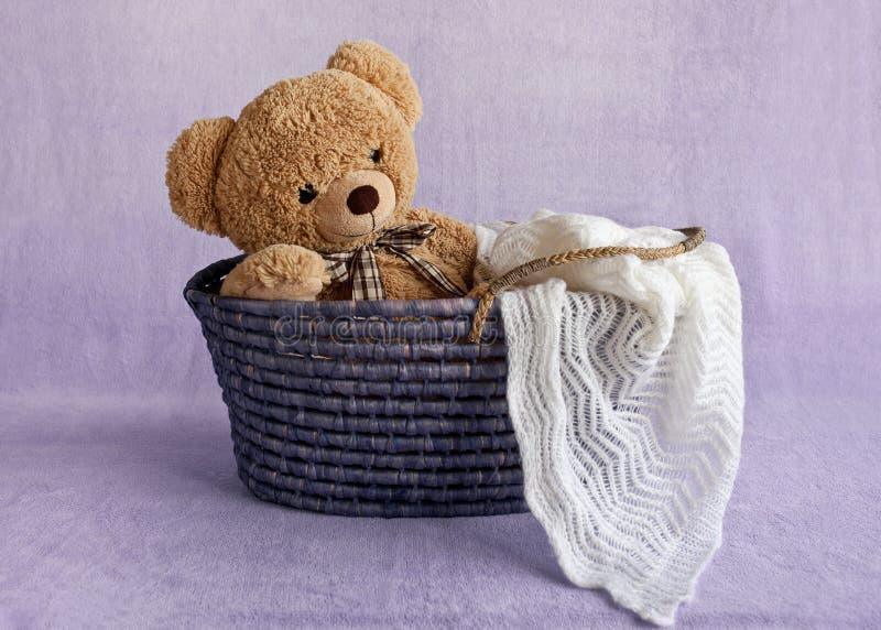 Teddybeer in mand stock afbeelding