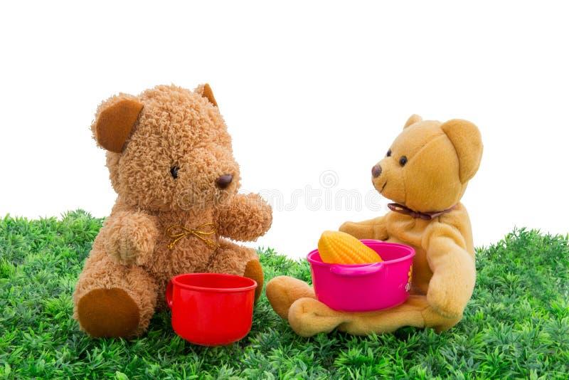 Teddybeer met royalty-vrije stock foto's