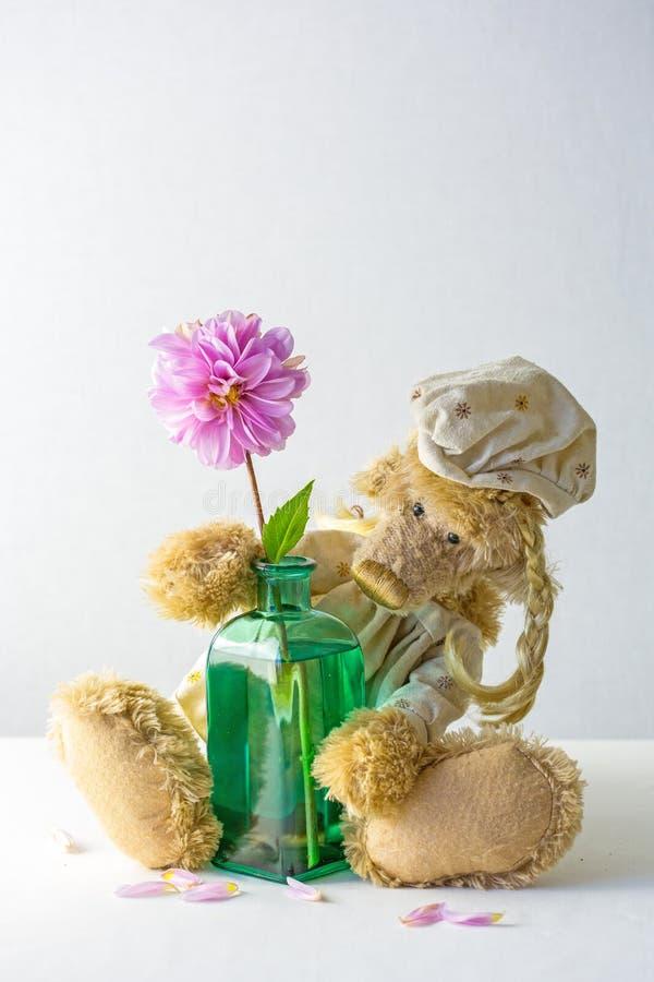 Teddybeer met vaas en bloem stock fotografie