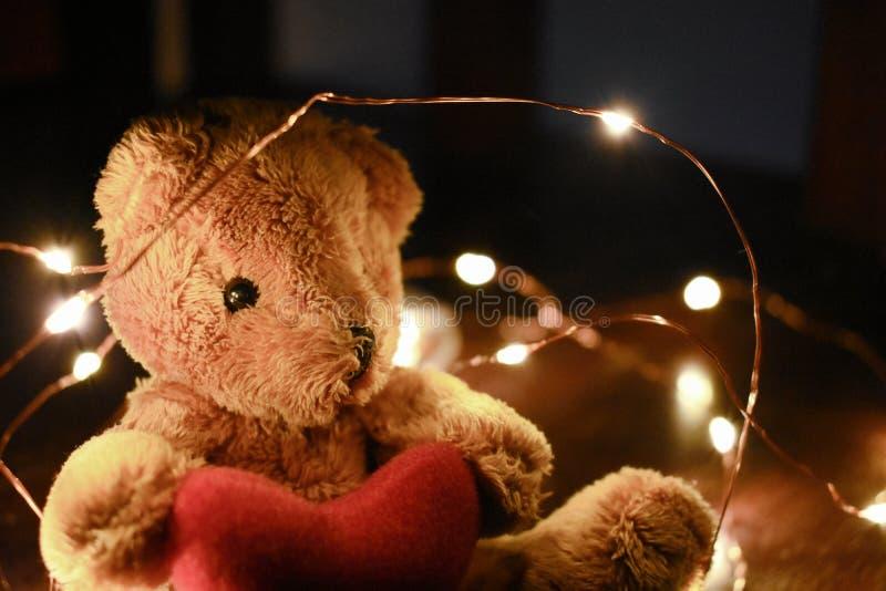 Teddybeer met warm geleid licht stock fotografie