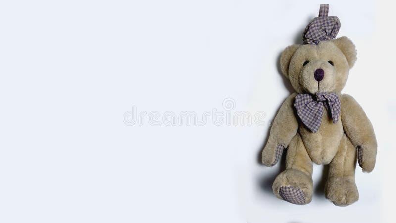 Teddybeer op witte achtergrond stock foto