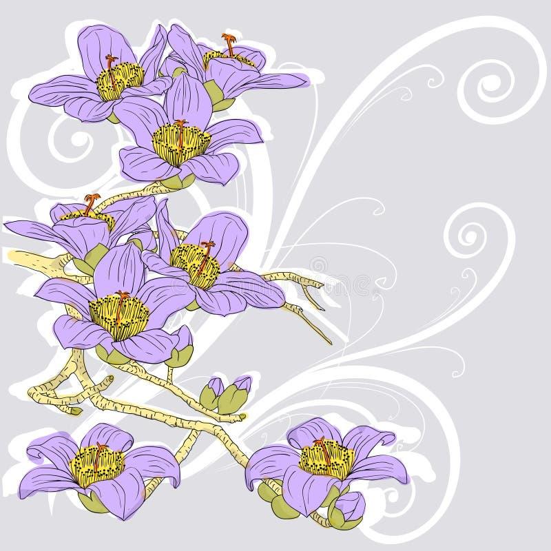 Tedere takje tot bloei komende orchideeën vector illustratie