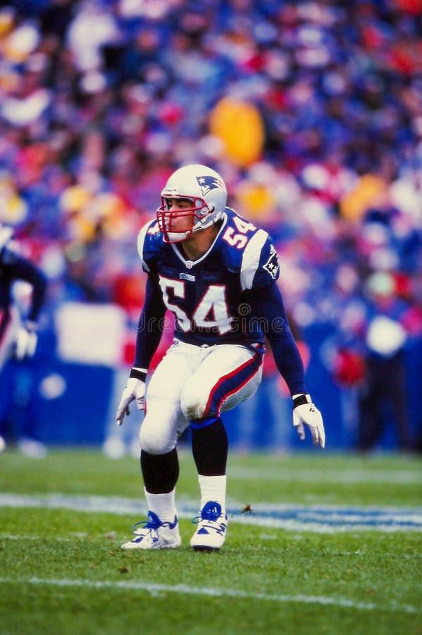Tedy Bruschi New England Patriots royalty-vrije stock foto