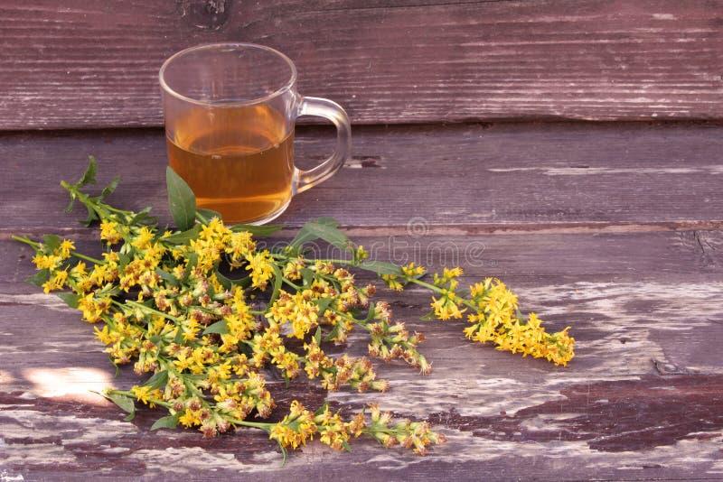 Tee im Glasbecher auf hölzernem Hintergrund mit Goldrutenkrautanlage, Solidago virgaurea Festlichkeiten Niere und Harntraktkrankh lizenzfreie stockfotografie