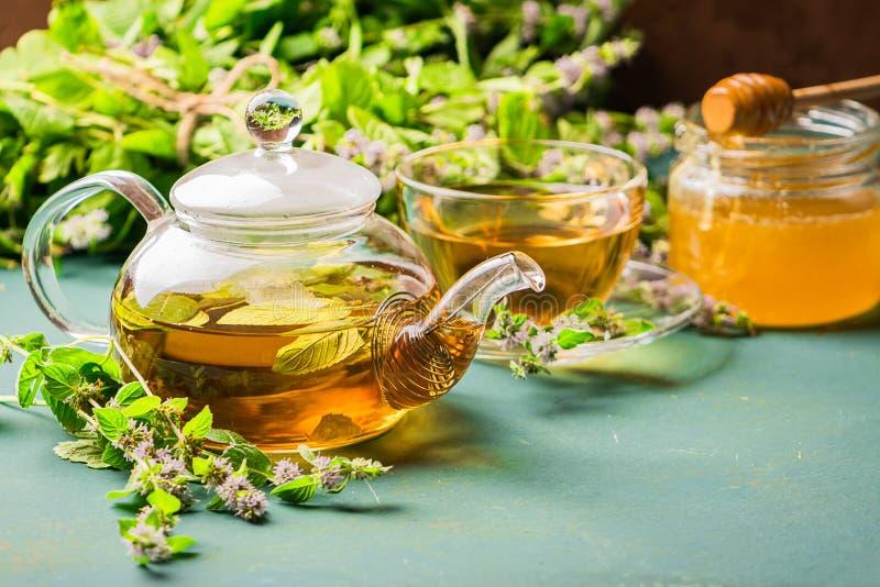 Tee mit frischen Blättern der Melissenminzenschale und -teekanne auf einem rustikalen Hintergrund Heilenkräutergetränk Horizontal lizenzfreies stockbild