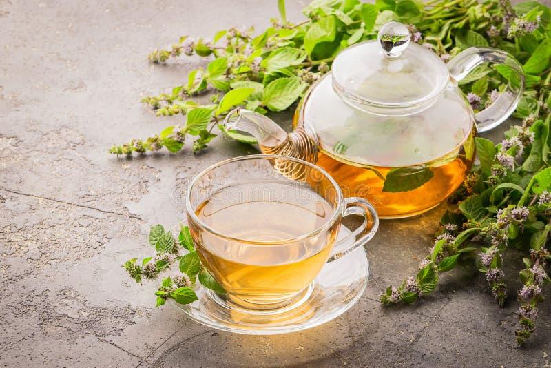 Tee mit frischen Blättern des grauen Hintergrundes der Zitronenminzenschale und -teekanne Heilenkräutergetränk Horizontaler Rahme lizenzfreies stockbild