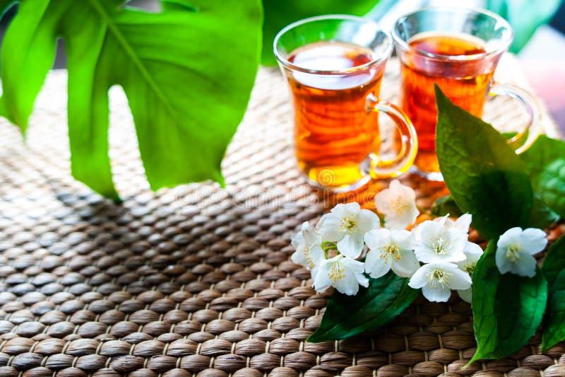 Tee mit Jasmin Zwei Tassen Tee auf einem natürlichen Hintergrund von gre lizenzfreie stockfotografie