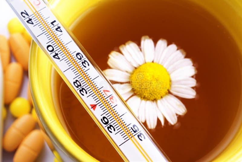 Tee mit Kamillenthermometer stockfotografie