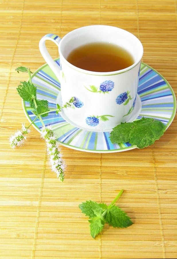 Tee mit Minze lizenzfreie stockfotos