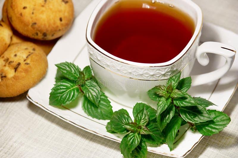 Tee mit Minze lizenzfreies stockbild