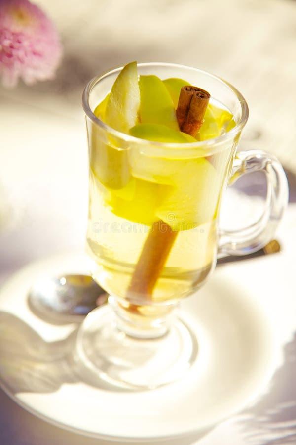 Tee mit Zimt lizenzfreies stockfoto