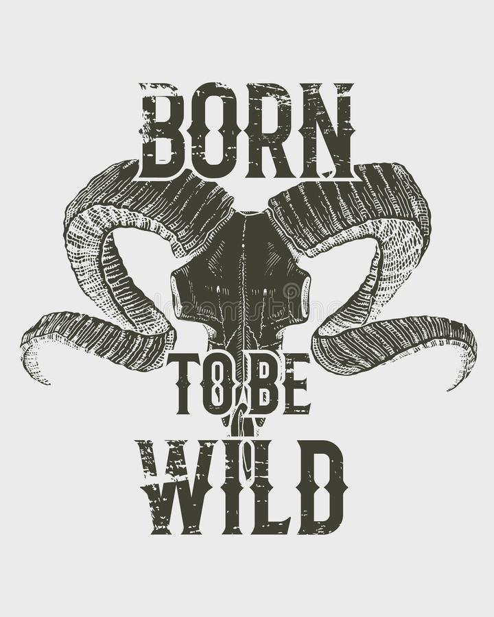 Tee print skull mountain goat with horns, t-shirt graphics, design with Animal. Vector grunge background. vintage stock illustration