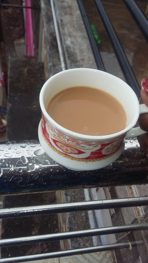 Tee am regnerischen Morgen stockbilder