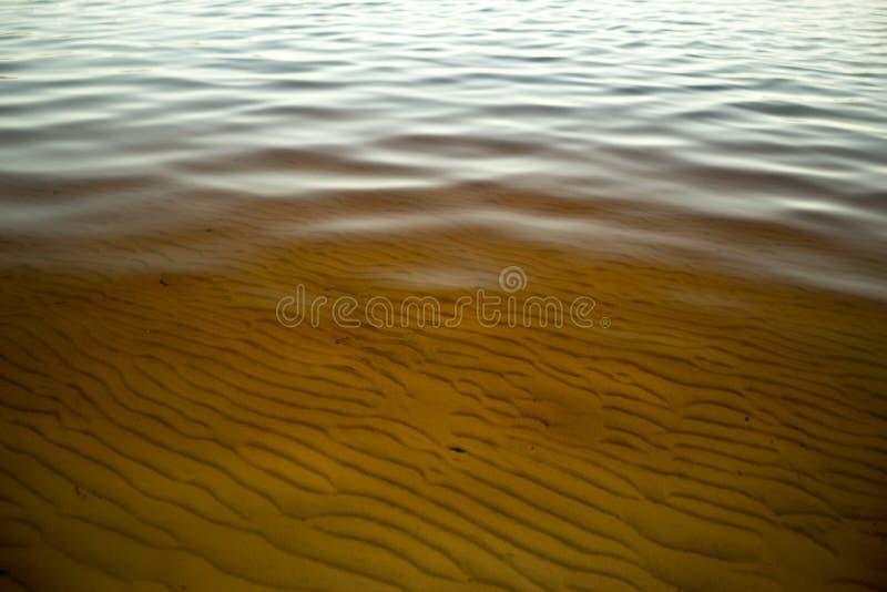 Tee-Tree See-Wasser stockbilder