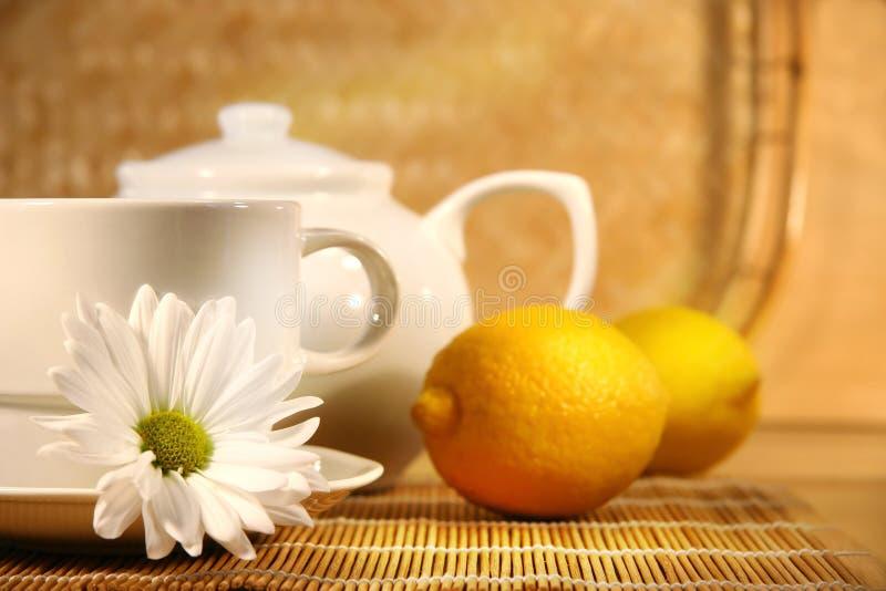 Tee und Zitrone stockbilder