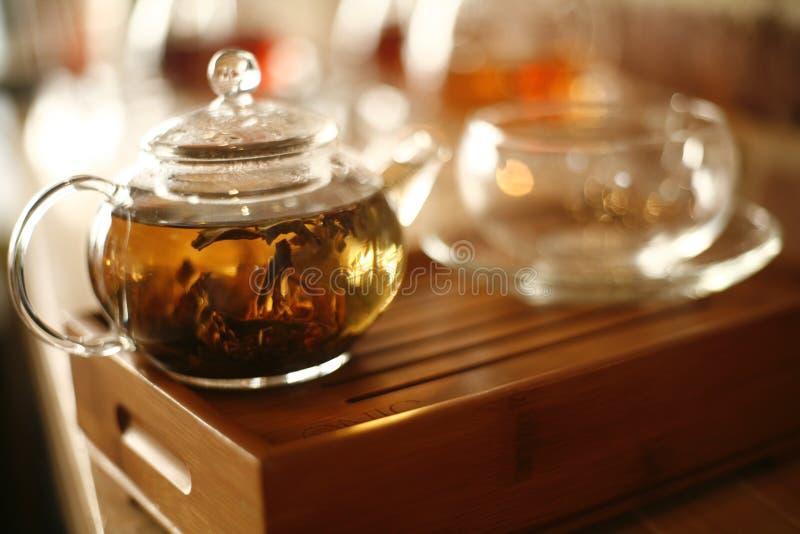Teeblätter, die im Potenziometer durchtränken stockbilder