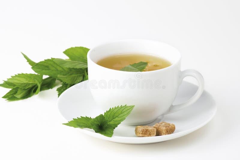 Teecup mit Minze stockfoto