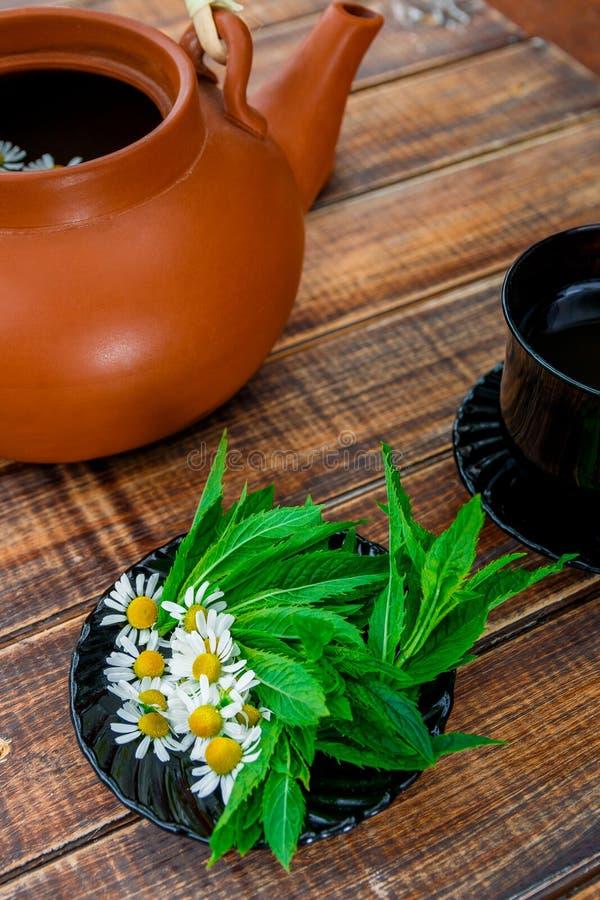 Teekonzept lizenzfreies stockbild