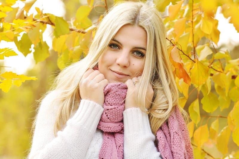 Teen girl in fall royalty free stock photos