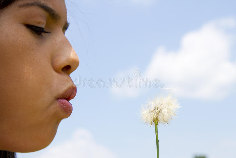 Download Teen Blowing Dandelion stock image. Image of childhood - 25662423
