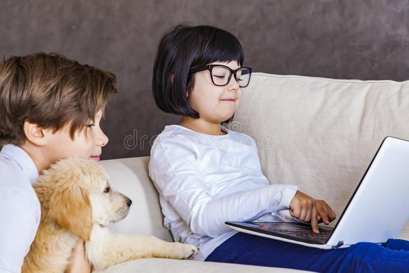 Teen boy and little girl with dog looking at laptop stock photo