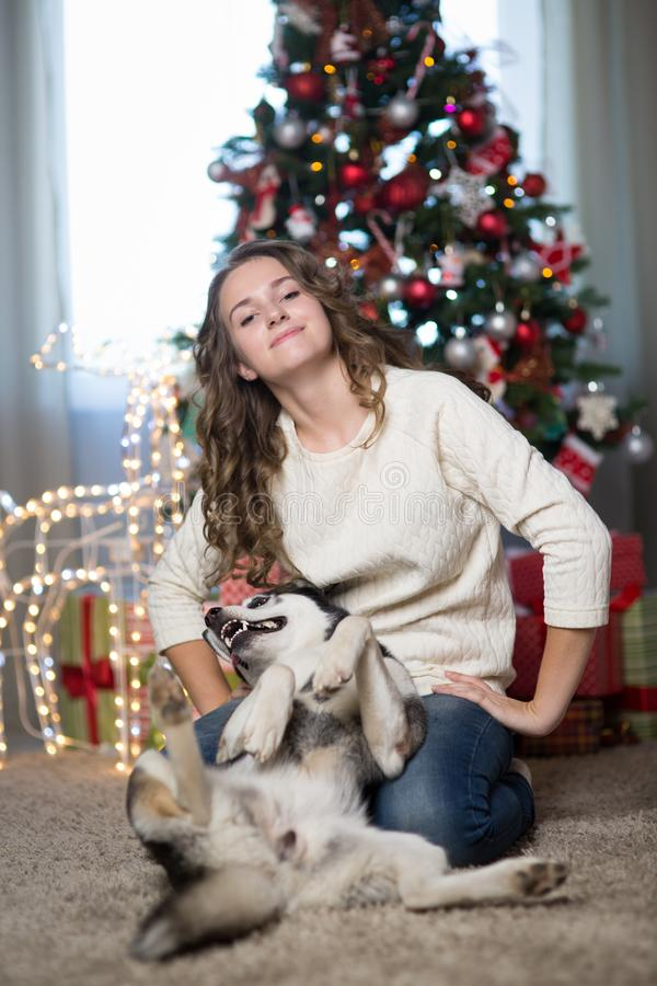 Teen girl with dog in a room for Christmas stock images