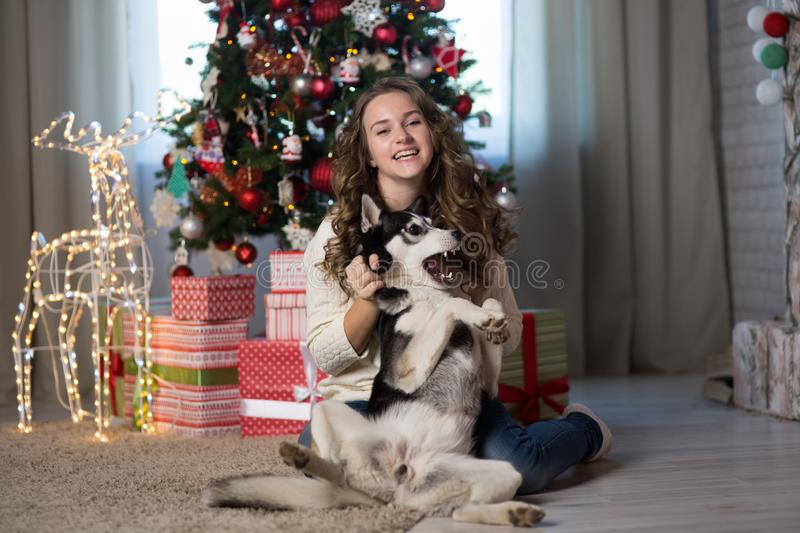 Teen girl with dog in a room for Christmas royalty free stock photos