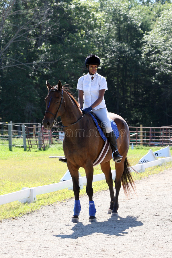 Download Teen on horseback stock image. Image of horse, young, woman - 6212829