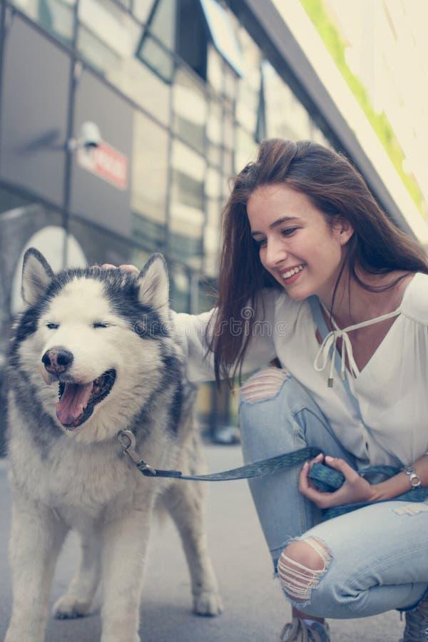 Teen loves husky. Teenage girl loves husky.Lifestyle stock images