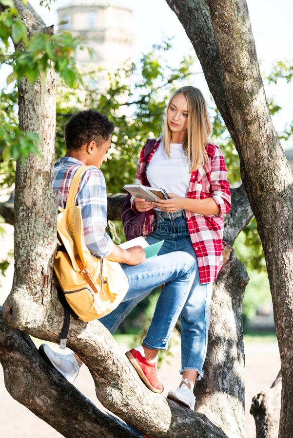 teen students couple relaxing on tree chatting stock images