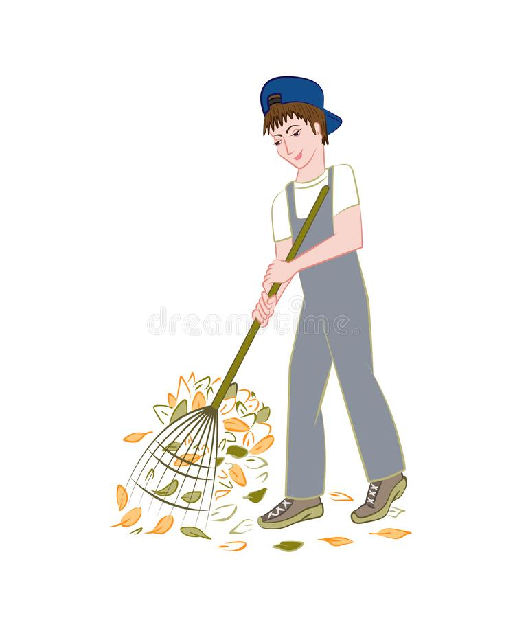Teen works in the garden. The boy collects fallen leaves. Vector image royalty free illustration