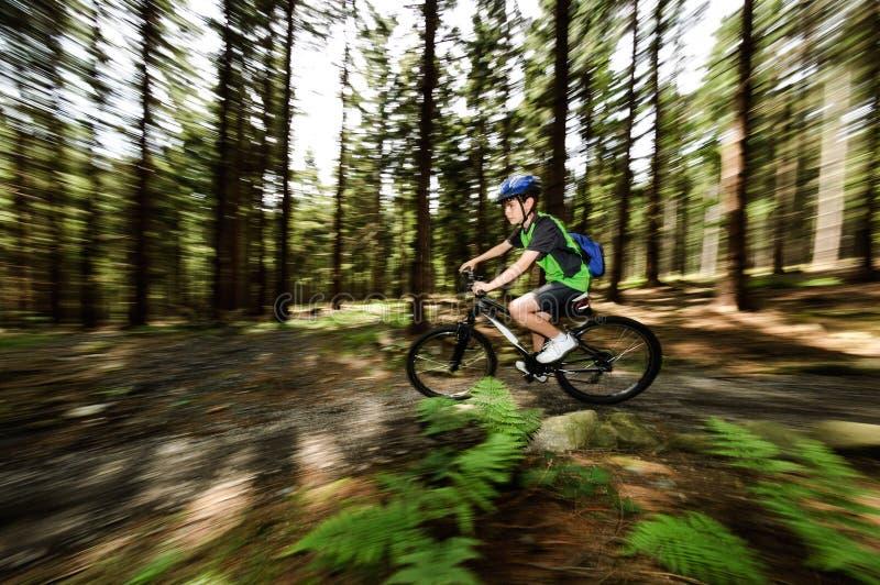 Teenage boy biking on forest trails royalty free stock photo