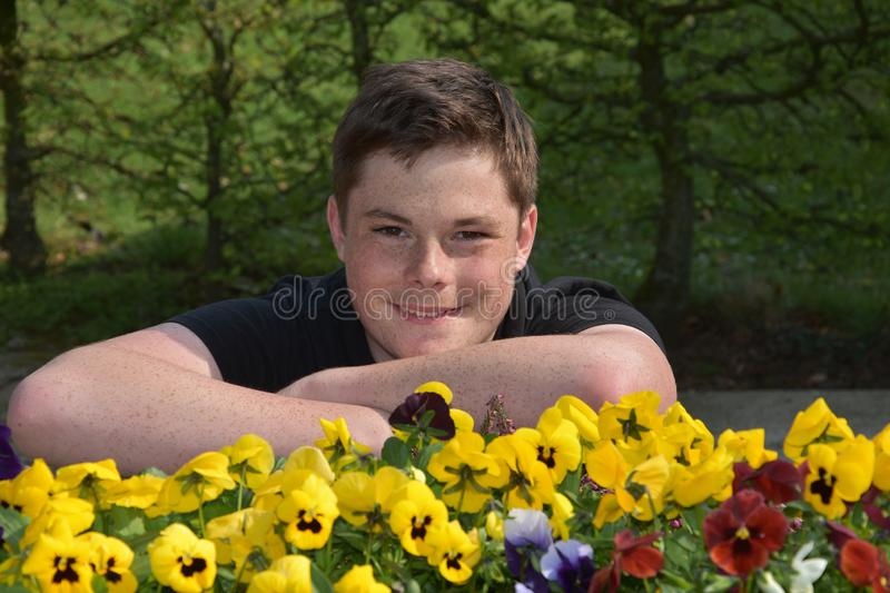 Teenage boy and yellow violas. Cute charming teenager boy with a lot of freckles and long  brown hair in the garden stock photography