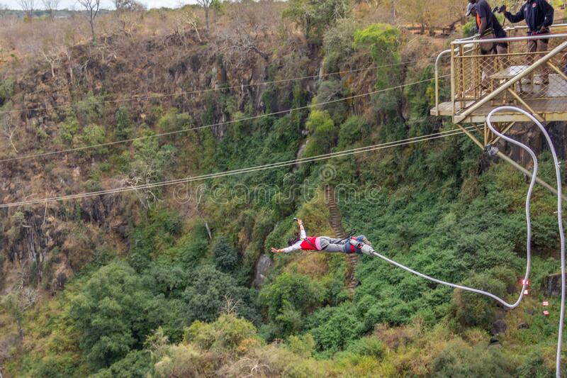Bungy or bungee jumping off 152 meter high Victoria Falls