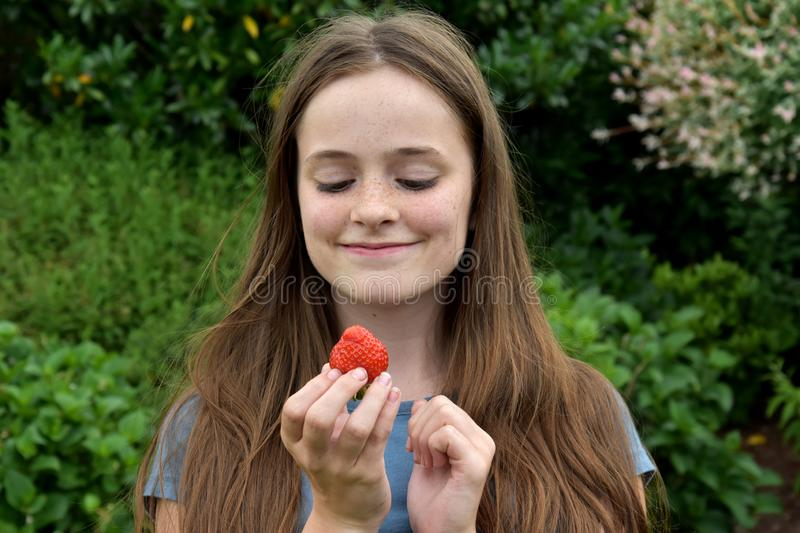 Teenage girl eating  a strawberry stock photography