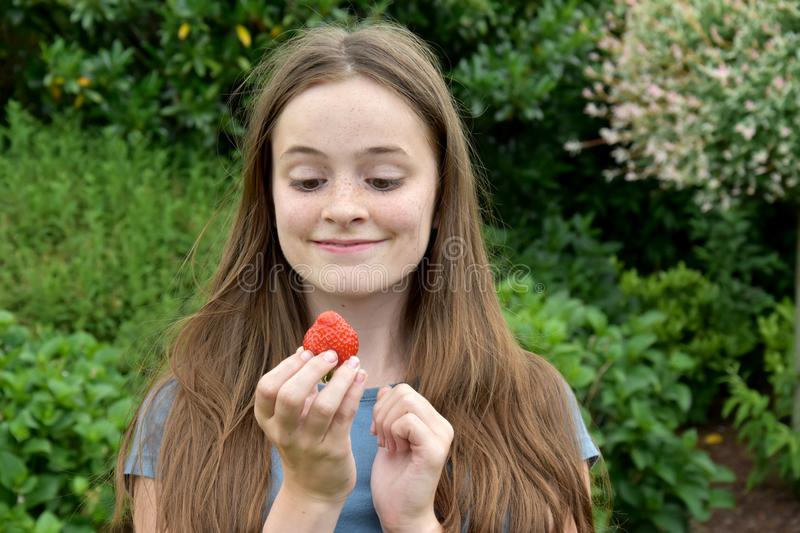 Teenage girl eating  a strawberry royalty free stock photography
