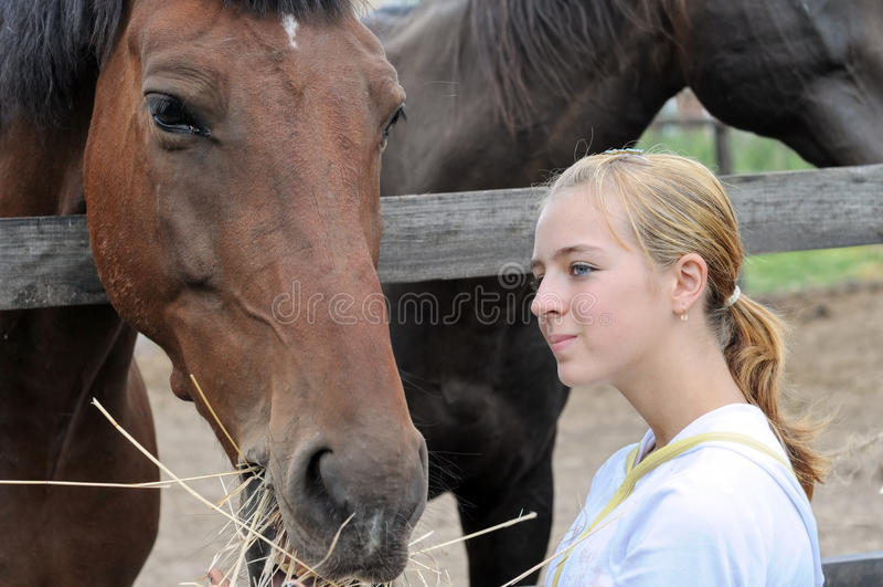 Teenage Girl Feeding Horses In The Farm Royalty Free Stock Photography