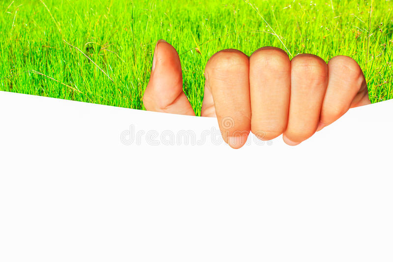 teenage girl hand holding blank white board paper business present on green grass nature background stock images